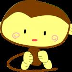 豊橋総合動植物公園「のんほいパーク」にてパタスザルの赤ちゃんが一般公開されました!