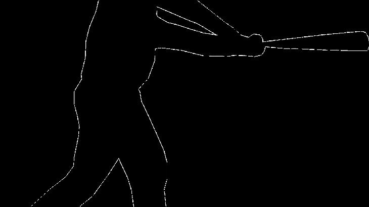 【中日‐広島戦】豊橋出身の藤井選手!故郷で逆転バースデー弾!