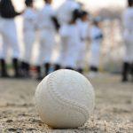 東三河勢の活躍に期待!第97回全国高等学校野球選手権愛知県大会(2015)