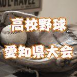 【第97回全国高等学校野球選手権愛知大会八日目】東三河勢の結果と予定